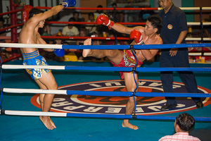 Train Muay Thai